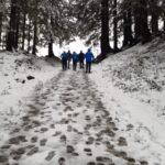 BergFZ- Wanderung