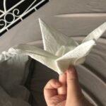 Origami- Challenge